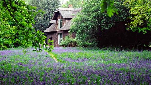 Queen Charlottes Cottage, Kew Gardens by Christine Matthews