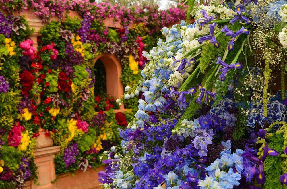 Chelsea Flower Show Shutterstock